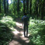 ポートランドで大自然を味わう。新婚旅行は、フォレストパークで森林浴を楽しむ
